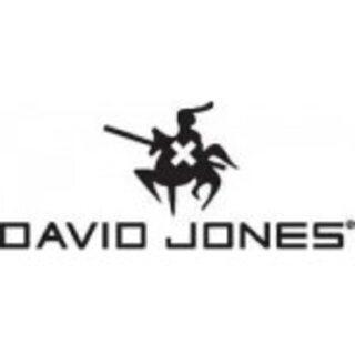 Купити сумки, клатчі, рюкзаки David Jones