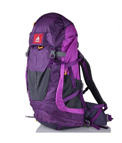 Женский рюкзак туриста ONEPOLAR (ВАНПОЛАР) W1638-violet